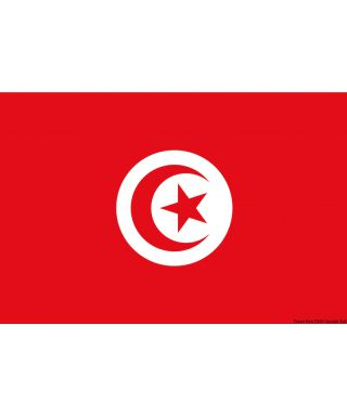 Pavillon Tunisie 20 x 30 cm en tissu de polyester teintes indélébiles